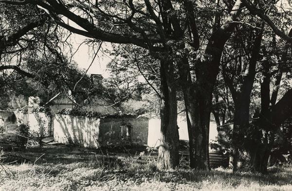 Ruins of Davilak House