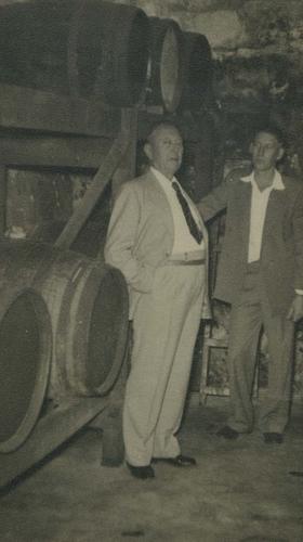 Wine cellar in Phoenix Road of Marich family