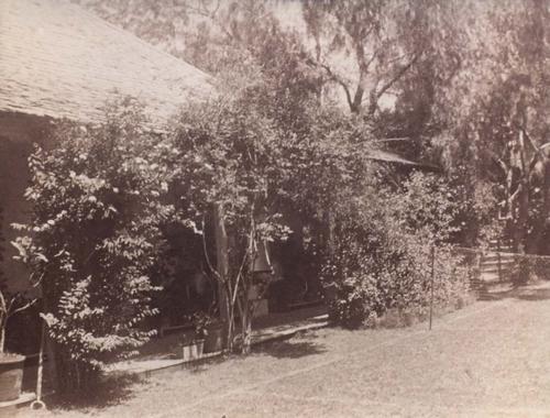 Davilak House, c1907
